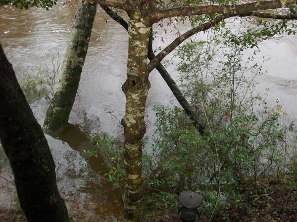 Jan2013 flood 2